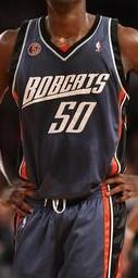 Charlotte bobcats 2008 -09 alternate jersey